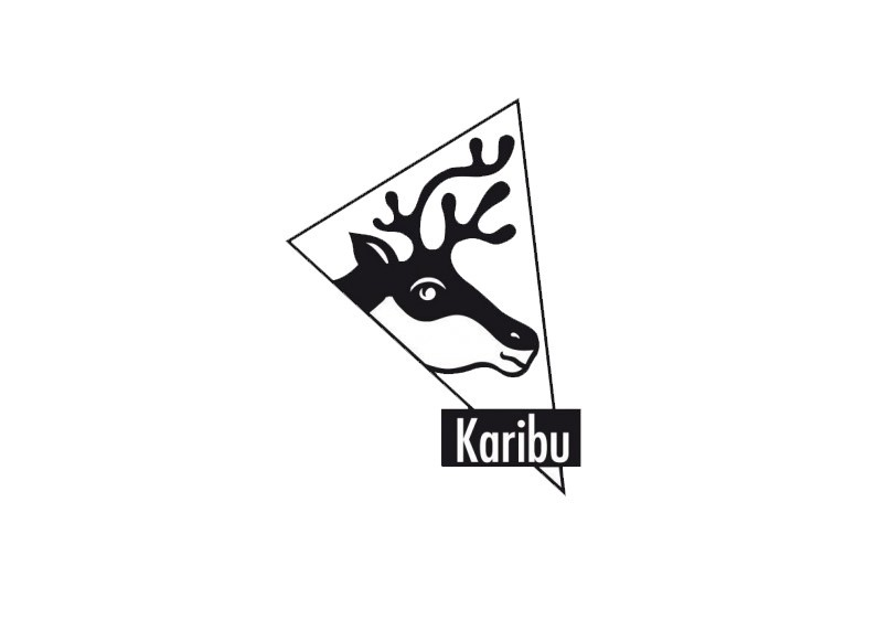 Karibu Blockbohlengarage mit Satteldach 28 mm - naturbelassen