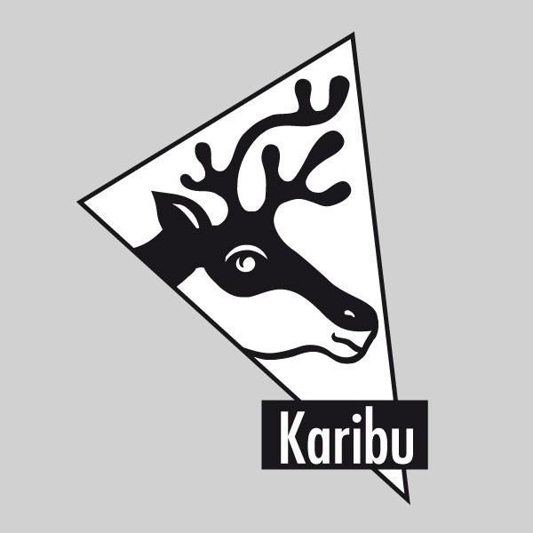 Karibu Holz-Gartenhaus Glücksburg 3 - 19 mm Pultdach Schraub- Stecksystem - terragrau