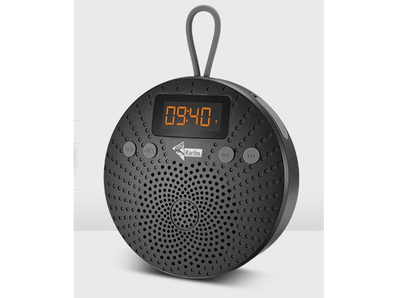 Karibu Premium Bluetooth Lautsprecher für Sauna und Infrarotkabine