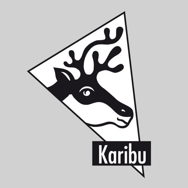 Karibu Holz-Gartenhaus Wandlitz 4 Anlehngartenhaus - 19 mm Wandstärke( dreiwandig)  - terragrau