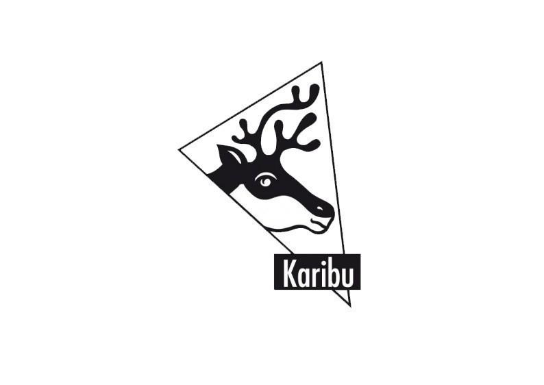 Karibu Woodfeeling Holz-Gartenhaus Pultdach Bastrup 5 - 28 mm mit 2 m Schleppdach inkl. Seiten- und Rückwand
