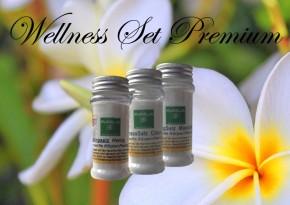 Wellness Set Premium: Badesalz / Saunapeeling